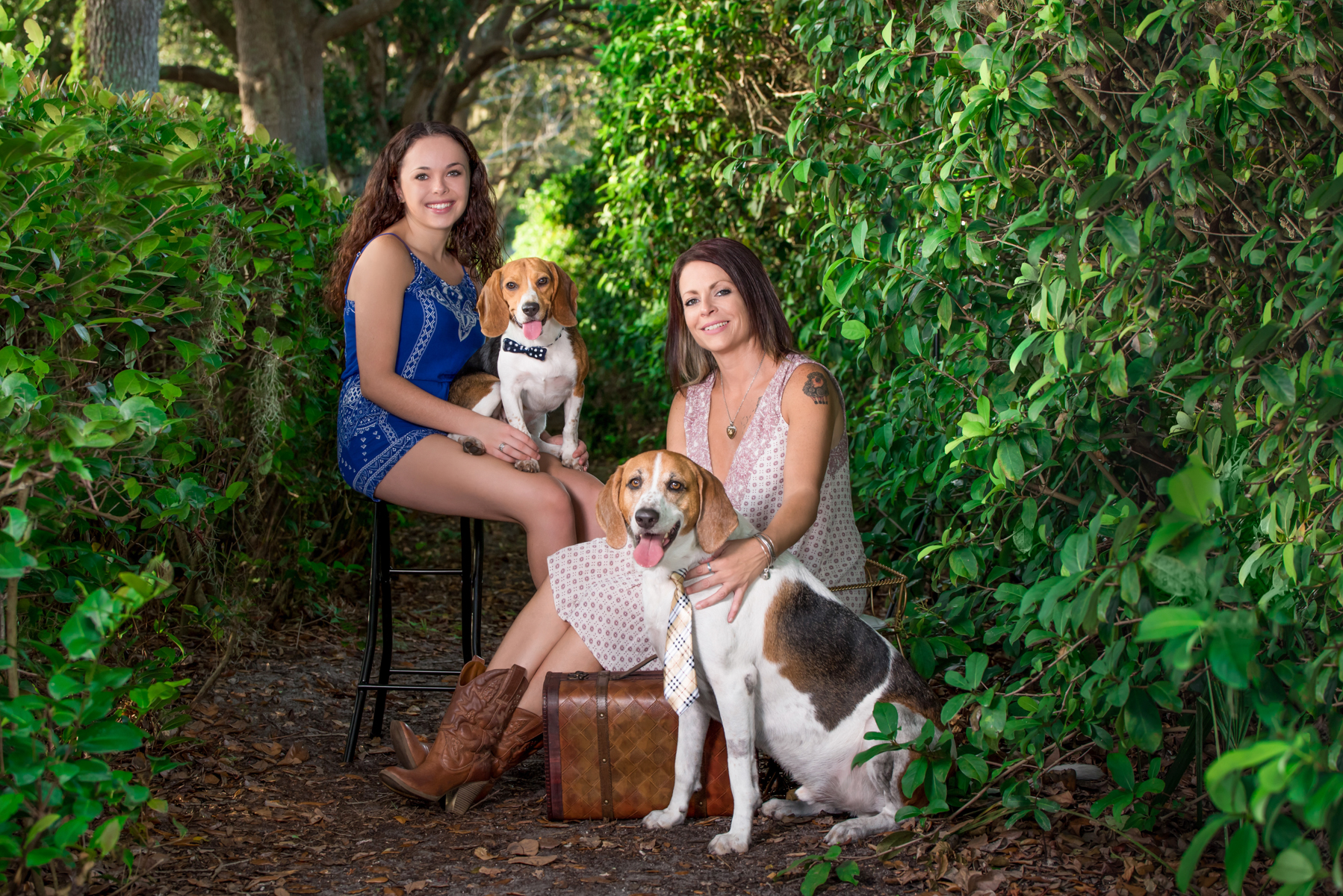 Small and large pet portraits Palm Beach, Florida.