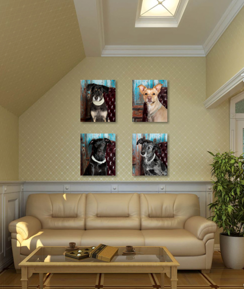 Custom Animal Portraits for your home or office.