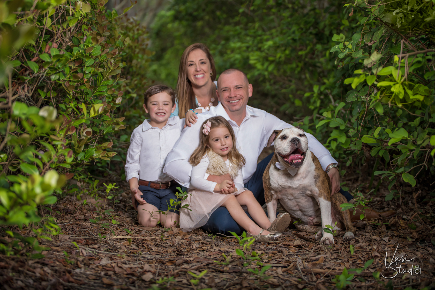 Seasonal family photo sessions available from Vasi Siedman.