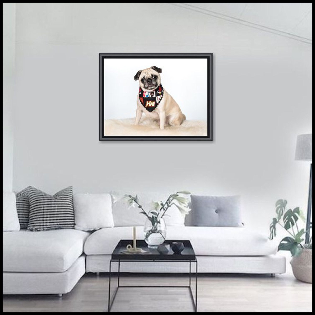 Custom dog photographs in South Florida